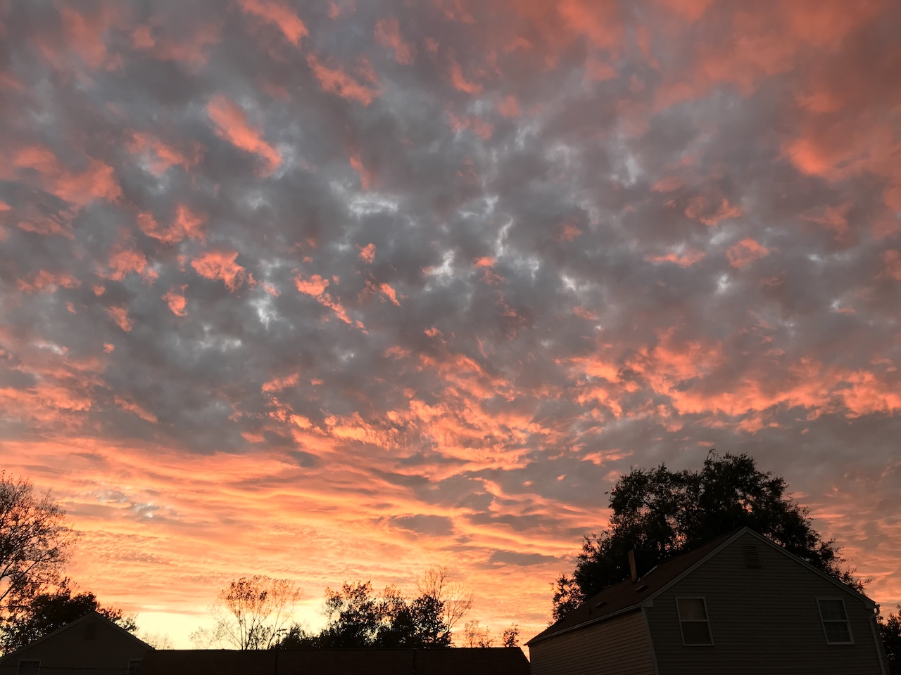 Spectacular sunset over the weekend (photo)